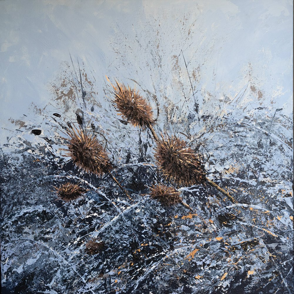 Teasels in Winter Hedgerow