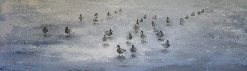Ducks on Frozen Pond (2)