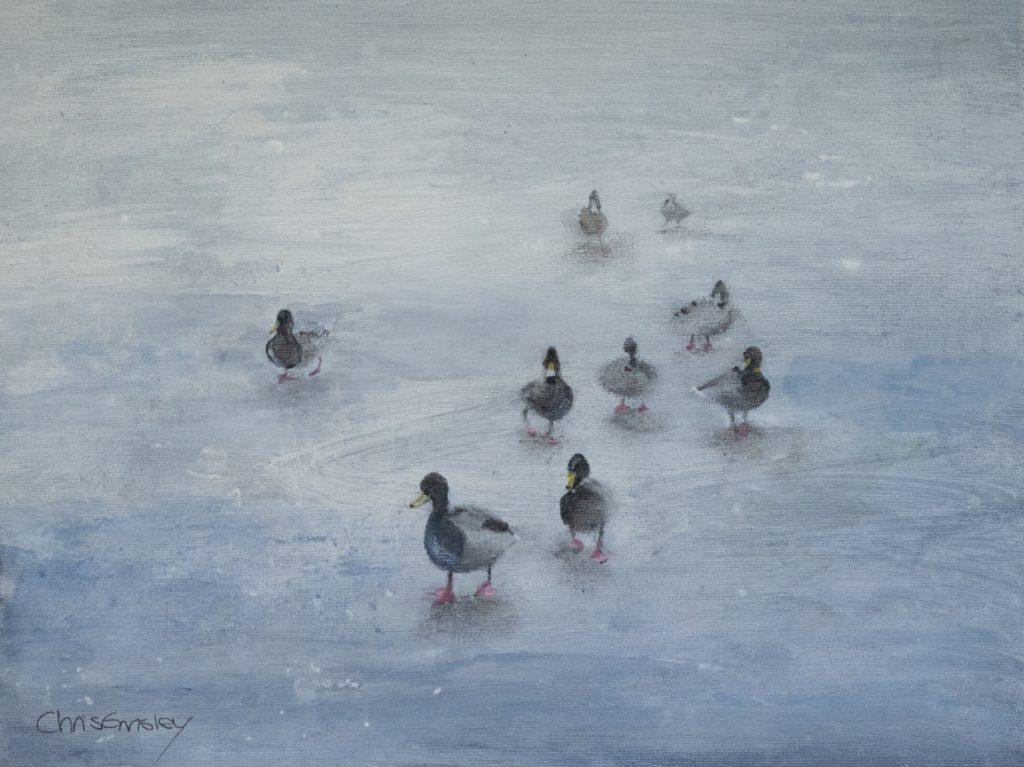 Ducks on Frozen Pond (1)